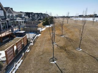 Photo 34: 36 Masters Landing SE in Calgary: Mahogany Detached for sale : MLS®# A1088073