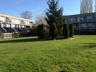 "Photo 6: 42 17706 60TH Avenue in Surrey: Cloverdale BC Condo for sale in ""CLOVERDOWNS"" (Cloverdale)  : MLS®# F1311886"