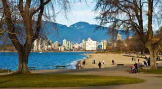 Photo 30: 202 2080 MAPLE STREET in Vancouver: Kitsilano Condo for sale (Vancouver West)  : MLS®# R2576001