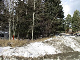 Photo 1: 2722 76 Street: Crowsnest Pass Land for sale : MLS®# A1053454