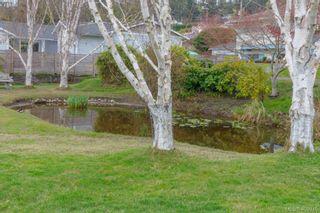 Photo 28: 5074 Cordova Bay Rd in VICTORIA: SE Cordova Bay House for sale (Saanich East)  : MLS®# 810941