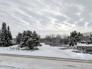 Photo 45: 192 QUESNELL Crescent in Edmonton: Zone 22 House for sale : MLS®# E4230395