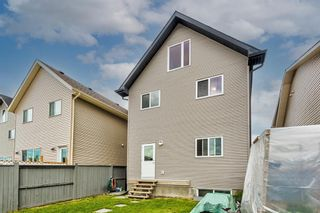Photo 41: 136 Copperpond Parade SE in Calgary: Copperfield Detached for sale : MLS®# A1114576