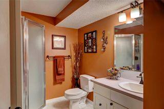 Photo 21: 110 DEERFIELD Terrace SE in Calgary: Deer Ridge House for sale : MLS®# C4123944