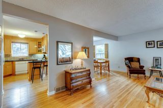Photo 5: 2224 38 Street SW in Calgary: Glendale Detached for sale : MLS®# A1136875
