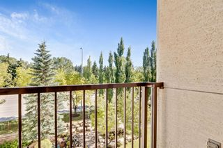 Photo 13: 430 5201 DALHOUSIE Drive NW in Calgary: Dalhousie Apartment for sale : MLS®# A1032387
