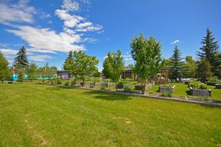 Photo 49: 2349  & 2351 22 Street NW in Calgary: Banff Trail Detached for sale : MLS®# A1035797
