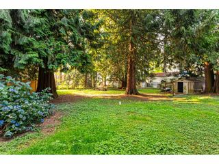 "Photo 37: 3625 208 Street in Langley: Brookswood Langley House for sale in ""Brookswood"" : MLS®# R2496320"