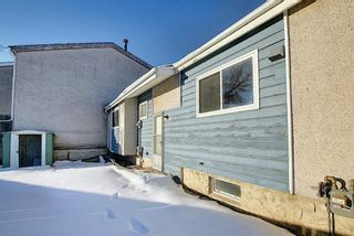 Photo 39: 57 Penworth Close SE in Calgary: Penbrooke Meadows Row/Townhouse for sale : MLS®# A1058735