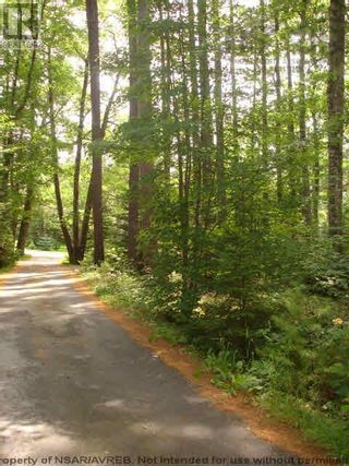 Photo 12: Lot 11 RAFUSE POINT Road in Pleasantville: Vacant Land for sale : MLS®# 202122075