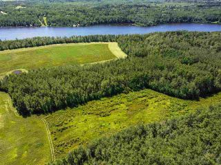 Photo 8: RR 274 TWP 481: Rural Leduc County Rural Land/Vacant Lot for sale : MLS®# E4224890