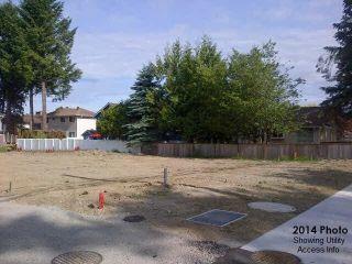 Photo 16: 12135 203 STREET in Maple Ridge: Northwest Maple Ridge Land for sale : MLS®# R2350746