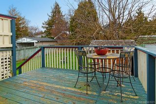 Photo 17: 1216 Oxford St in : Vi Fairfield West House for sale (Victoria)  : MLS®# 563521