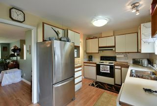 Photo 8: 1039 ROSAMUND Road in Gibsons: Gibsons & Area House for sale (Sunshine Coast)  : MLS®# R2615886