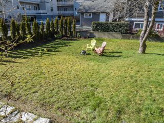 Photo 14: 528 3rd St in COURTENAY: CV Courtenay City House for sale (Comox Valley)  : MLS®# 835838