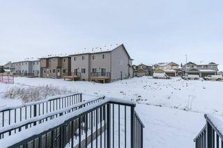 Photo 27: 71 SAVANNA Lane NE in Calgary: Saddle Ridge Detached for sale : MLS®# C4294146