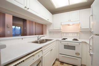 Photo 4: #115 22025 48th Ave in Langley: Murrayville Condo for sale : MLS®# F1316654