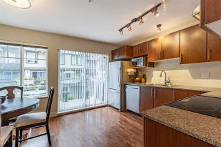 Photo 14: 47 20038 70 Avenue in Langley: Willoughby Heights Townhouse for sale : MLS®# R2584089