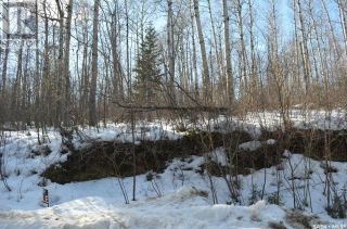 Photo 4: 154 Carwin Park DR in Emma Lake: Vacant Land for sale : MLS®# SK846951