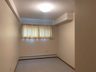 Photo 10: 569 GILLETT Street in Prince George: Central House for sale (PG City Central (Zone 72))  : MLS®# R2620557