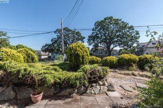 Photo 3: 918 Bay St in VICTORIA: Vi Hillside House for sale (Victoria)  : MLS®# 787949