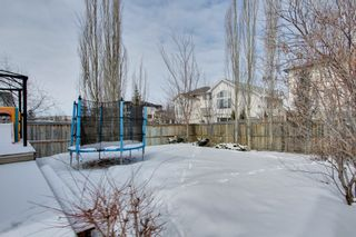 Photo 22: 51 Tuscany Hills Close NW in Calgary: House for sale : MLS®# C3606491
