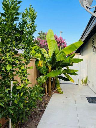 Photo 49: 7778 Morningside Lane in Highland: Residential for sale (276 - Highland)  : MLS®# EV21160432