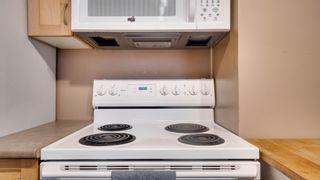 Photo 10: 10733 68 Avenue in Edmonton: Zone 15 House for sale : MLS®# E4248966