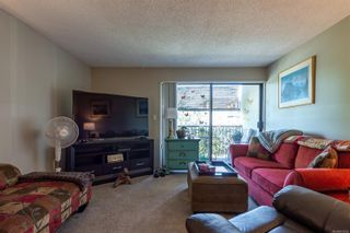 Photo 18: 213 585 Dogwood St in : CR Campbell River Central Condo for sale (Campbell River)  : MLS®# 876595