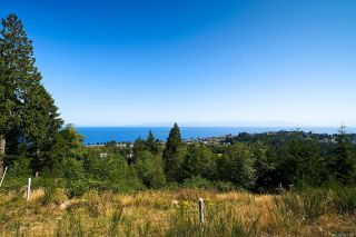 Photo 3: 5179 Dewar Rd in : Na North Nanaimo Unimproved Land for sale (Nanaimo)  : MLS®# 867185