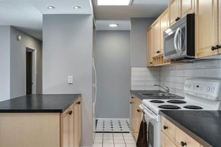 Photo 11: 307 903 19 Avenue SW in Calgary: Lower Mount Royal Apartment for sale : MLS®# A1152500