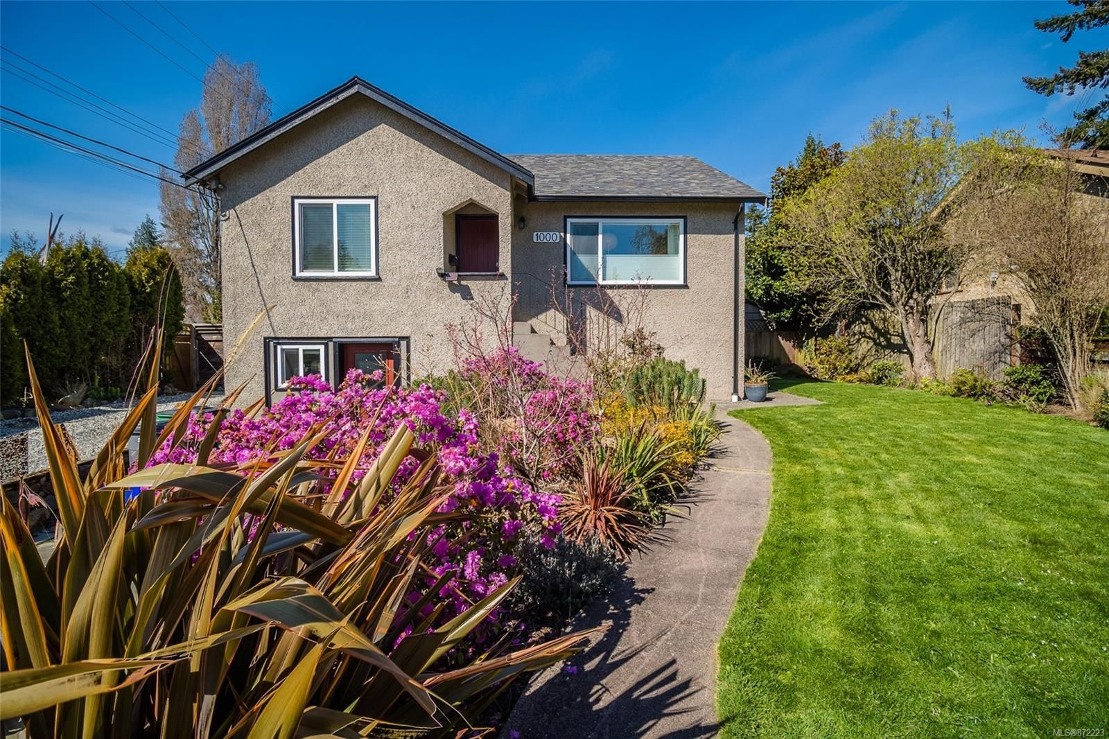 Main Photo: 1000 Tattersall Dr in : SE Quadra House for sale (Saanich East)  : MLS®# 872223