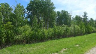 Photo 20: 54411 RR 40: Rural Lac Ste. Anne County Rural Land/Vacant Lot for sale : MLS®# E4239946