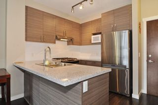 Photo 6: 307 1150 KENSAL Place in Coquitlam: New Horizons Condo for sale : MLS®# R2226865
