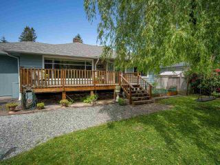 Photo 4: 22127 CLIFF Avenue in Maple Ridge: West Central House for sale : MLS®# R2583269