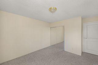 Photo 11: 312 1655 Begbie St in : Vi Fernwood Condo for sale (Victoria)  : MLS®# 885110