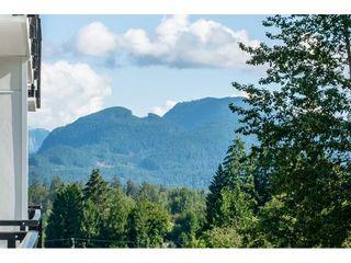 """Photo 17: 413 22315 122 Avenue in Maple Ridge: West Central Condo for sale in """"EMERSON"""" : MLS®# R2475719"""
