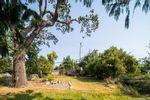 Main Photo: 2074 Neil St in : OB Henderson Land for sale (Oak Bay)  : MLS®# 888214