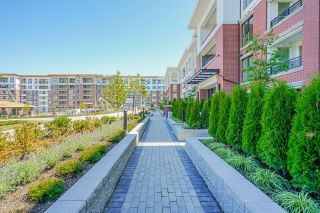 """Photo 6: D110 8150 207 Street in Langley: Willoughby Heights Condo for sale in """"Union Park"""" : MLS®# R2603485"""