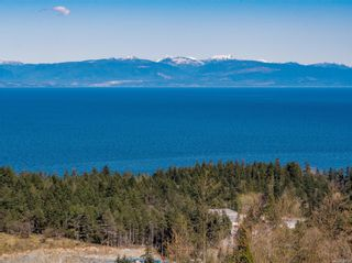 Photo 7: 113 Abalone Pl in : Na North Nanaimo Land for sale (Nanaimo)  : MLS®# 866717