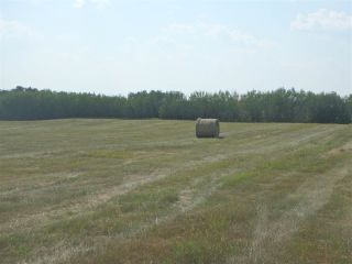 Photo 2: Hwy 21 and RR 224: Rural Leduc County Rural Land/Vacant Lot for sale : MLS®# E4212486