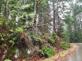Photo 8: LOT 8 MACMILLAN Dr in : PA Sproat Lake Land for sale (Port Alberni)  : MLS®# 868768