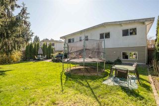 Photo 24: 1135 GLADE Court in Port Coquitlam: Birchland Manor House for sale : MLS®# R2568039