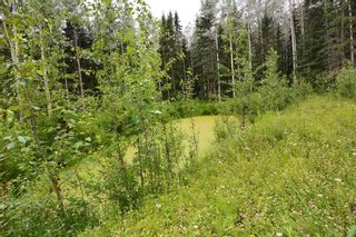 """Photo 16: 18865 GRANTHAM Road in Smithers: Smithers - Rural House for sale in """"Grantham"""" (Smithers And Area (Zone 54))  : MLS®# R2389601"""