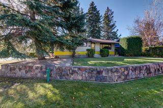 Photo 45: 17 STANLEY Drive: St. Albert House for sale : MLS®# E4266224