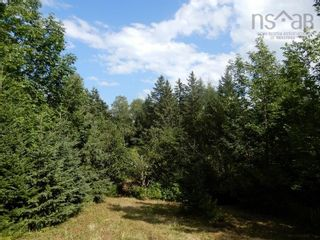 Photo 8: Salem Road in Greenhill: 108-Rural Pictou County Vacant Land for sale (Northern Region)  : MLS®# 202121181