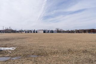 Photo 26: 71 Strand Circle in Winnipeg: River Park South Residential for sale (2F)  : MLS®# 202105676