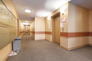 Photo 3: 211 689 Bay St in : Vi Downtown Condo for sale (Victoria)  : MLS®# 855378