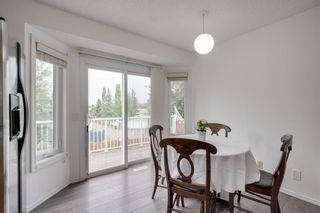 Photo 30: 144 SHAWINIGAN Drive SW in Calgary: Shawnessy Detached for sale : MLS®# A1131377