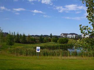 Photo 45: 5052 MCLUHAN Road in Edmonton: Zone 14 House for sale : MLS®# E4231981